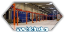 automatic powder coating lines